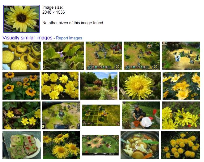 12 Useful Image Search Tools